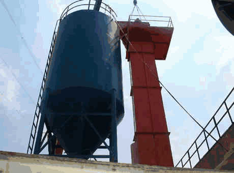 Singapore low price large brick and tile bucket elevator sell